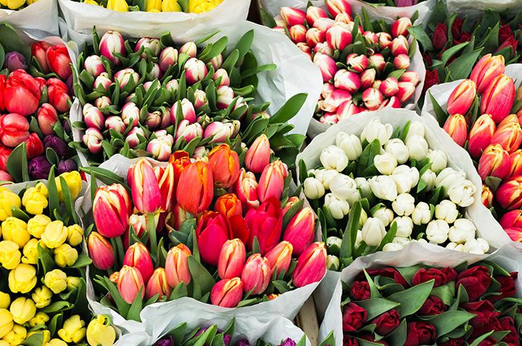 «Святкові» ціни на «святкові» квіти