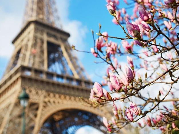 У Харкові пройде фестиваль «Французька весна»