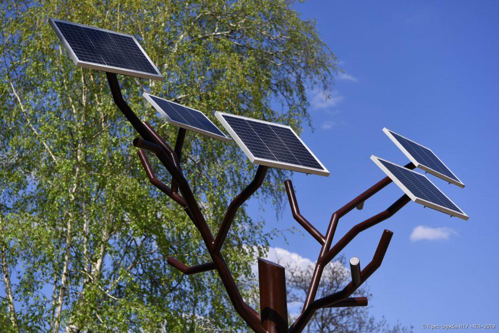 В Політехнічному інституті почали створювати «Сонячний сад»