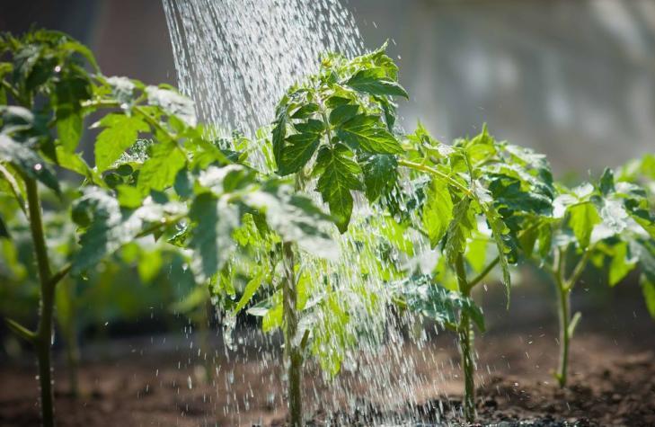 У Києві затвердили підвищення тарифу на воду