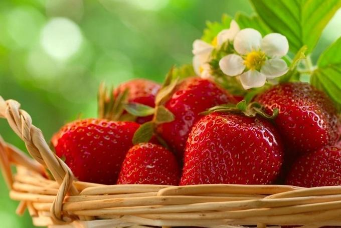 На Харківщині вітчизняні ягоди почали витісняти імпортні