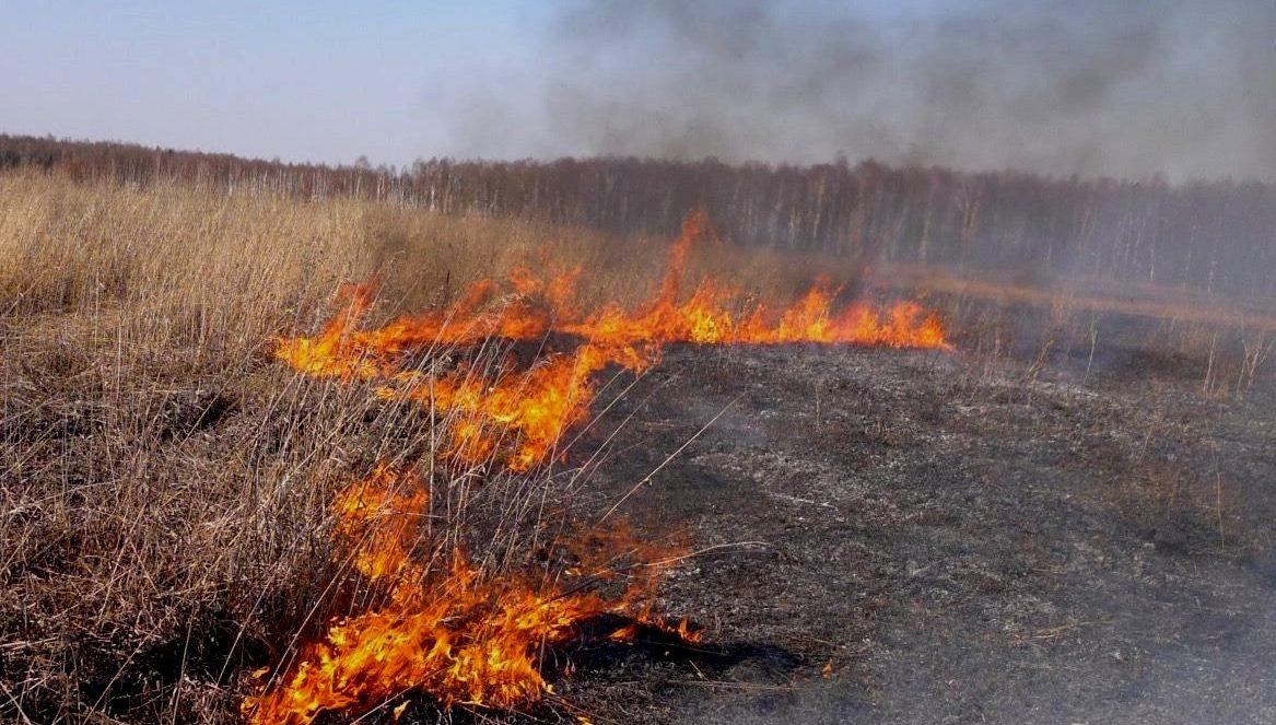 На Харківщині продовжує горіти суха трава
