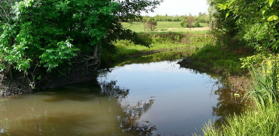Картинки по запросу річка уди