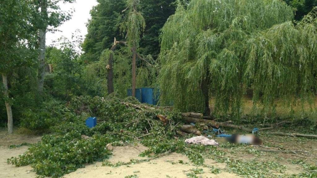 Падіння дерева на базі відпочинку стало причиною ще однієї смерті