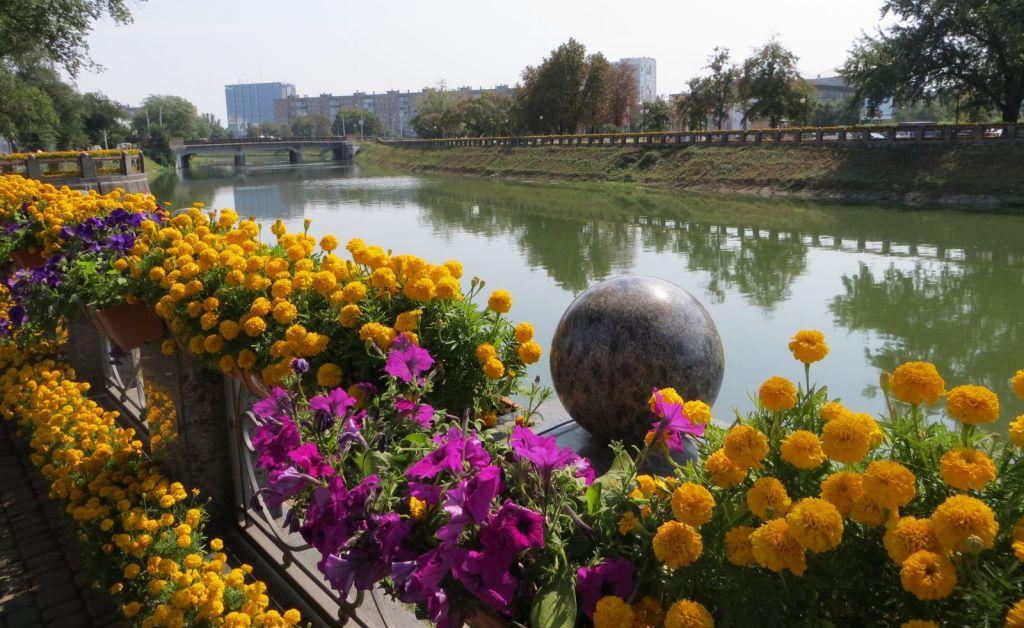 У сквері «Стрілка» стартувала традиційна виставка квітів