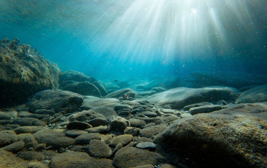 На Харківщині стартували змагання з підводного орієнтування
