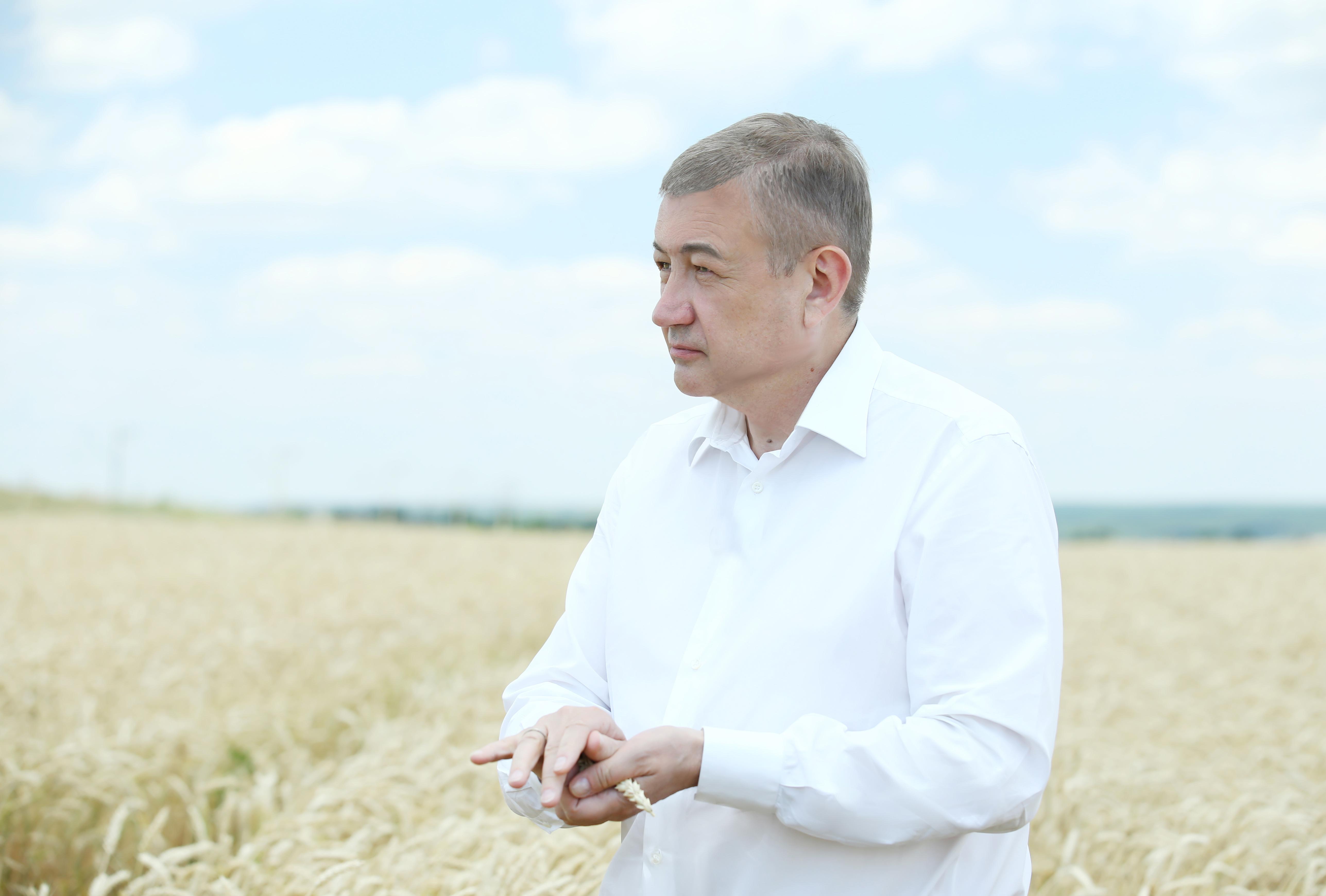 Сергій Чернов: «отримаємо близько 3-3.1 млн тонн ранніх зернових»
