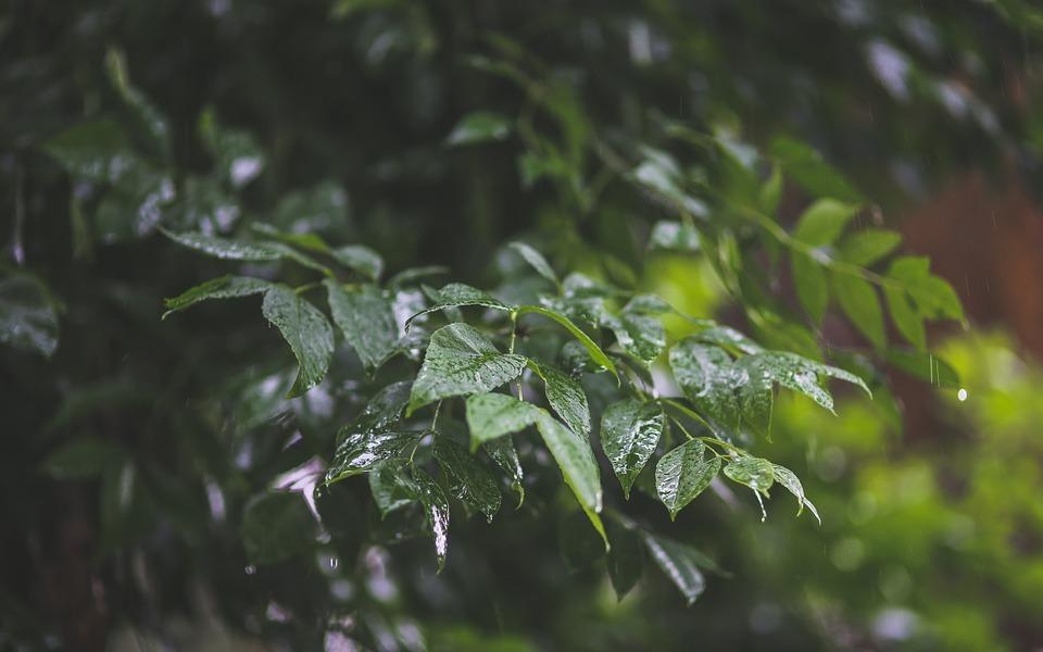2 липня у Харкові оголошено штормове попередження