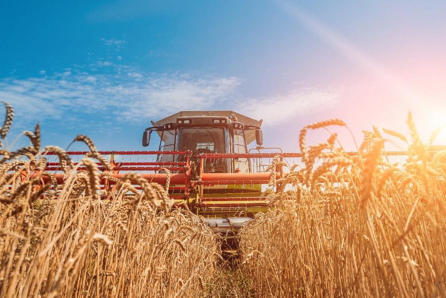 На Харківщині намолотили перший мільйон тонн зерна нового врожаю