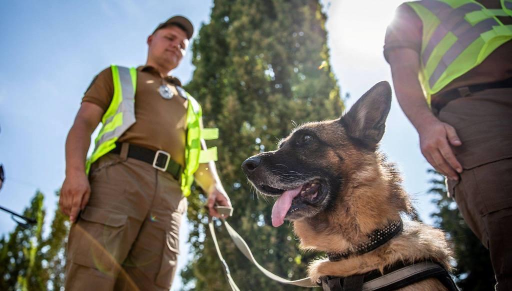 Нацгвардійці забезпечуватимуть громадський порядок пішими патрулями